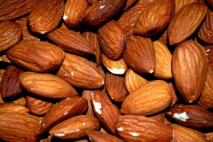 protein and fiber foods for weight loss