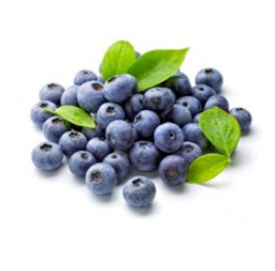 blue-berries for metabolism